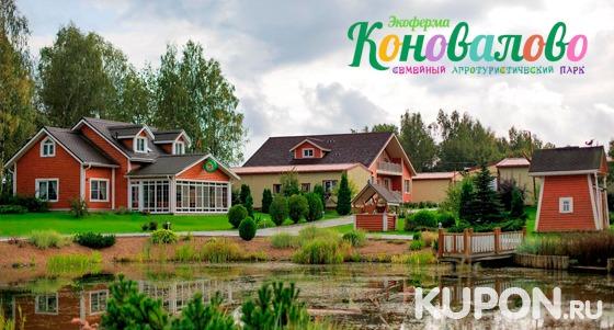 Скидка 50% на отдых в загородном экоотеле «Коновалово» для компании до 4 человек: 3-разовое питание, русская баня, экобеседки с камином и не только!