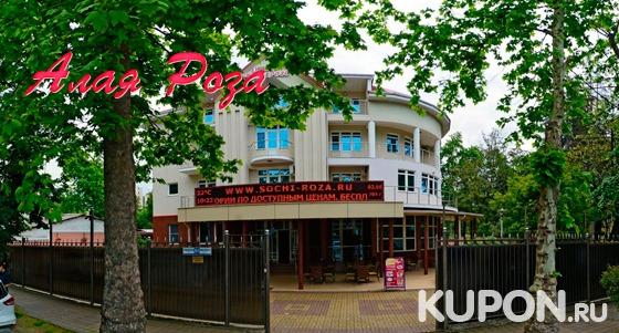 Проживание в отеле «Алая роза» на Черном море: завтраки, бассейн, детская площадка, Wi-Fi, холодильник и кондиционер в номере. Скидка 40%