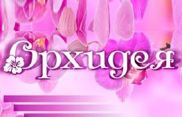 Экспресс-центр массажа и косметологии «Орхидея»